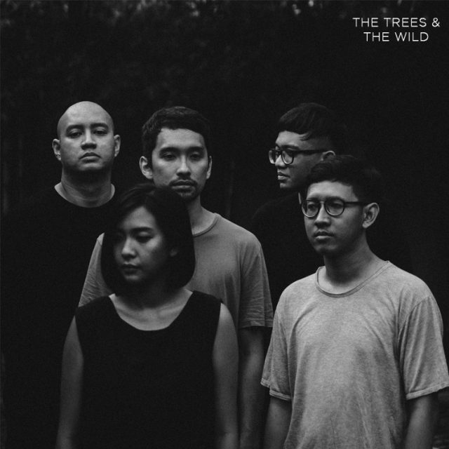 The Trees & The Wild ( Band )